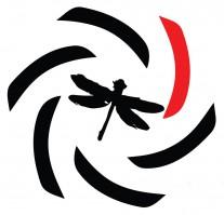Dragonfly 360 Logo
