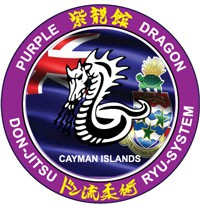 Purple Dragon International Logo
