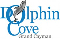 Dolphin Cove Ltd. Logo