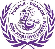 Purple Dragon International Logo