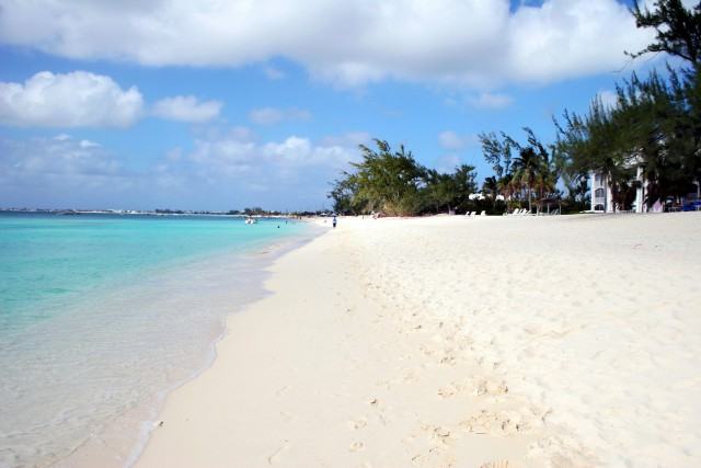 Image Result For Attractions In Grand Cayman Islands
