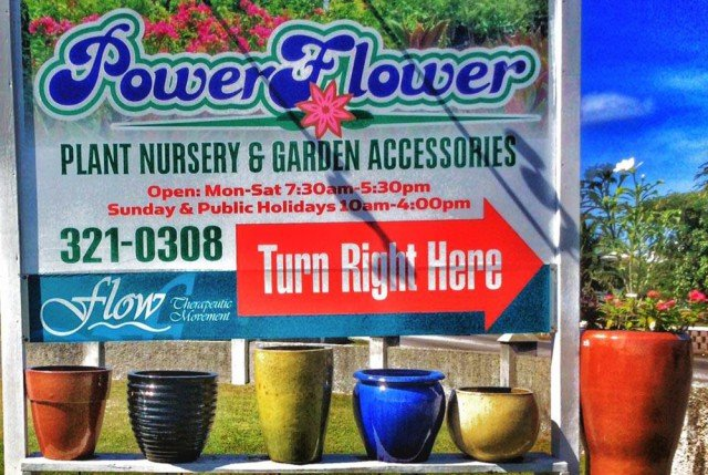Power Flower Ltd. Power Flower Ltd. Cayman Islands