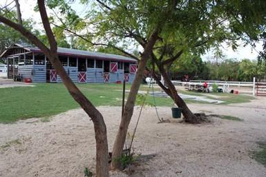 Equestrian Center Riding School & Boarding Stables Equestrian Center Riding School & Boarding Stables Cayman Islands