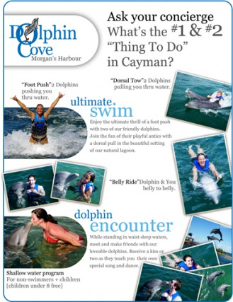 Dolphin Cove Ltd. Dolphin Cove Ltd. Cayman Islands