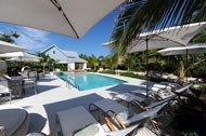 Cotton Tree Cotton Tree Cayman Islands