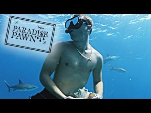 Cash Wiz Cash Wiz Cayman Islands