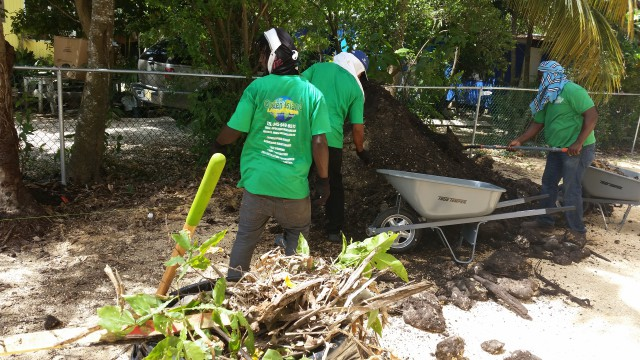 Green Island Landscaping Green Island Landscaping Cayman Islands