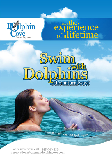 Dolphin Cove Ltd At West Bay Ecayonline